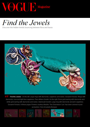 find-the-jewels